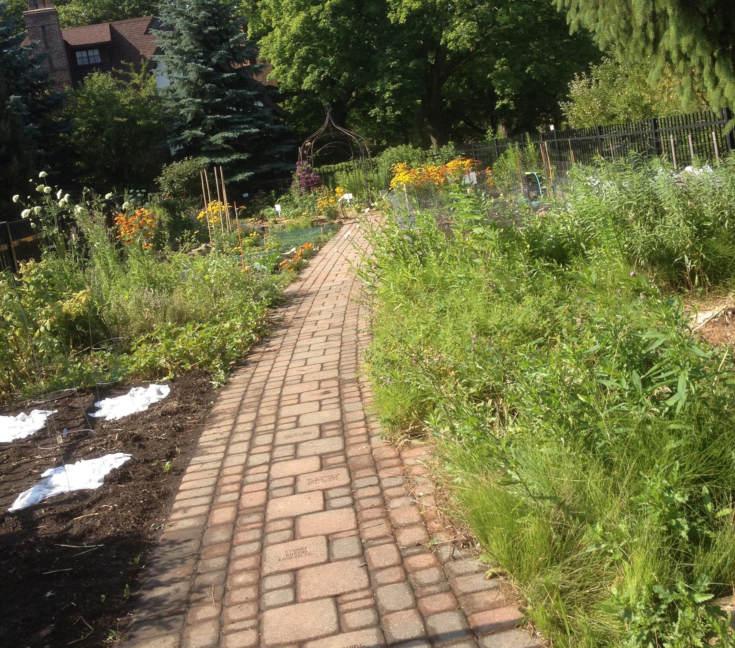 C Learning Garden