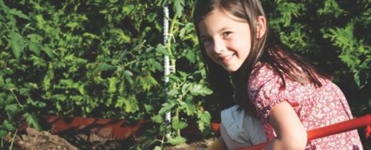 Spring in the school garden